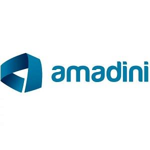 logo-amadini